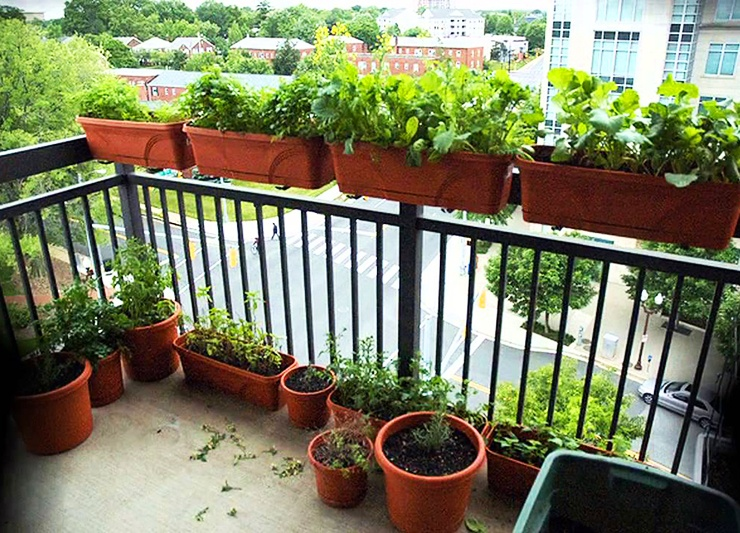 apartment balcony railing garden hangers