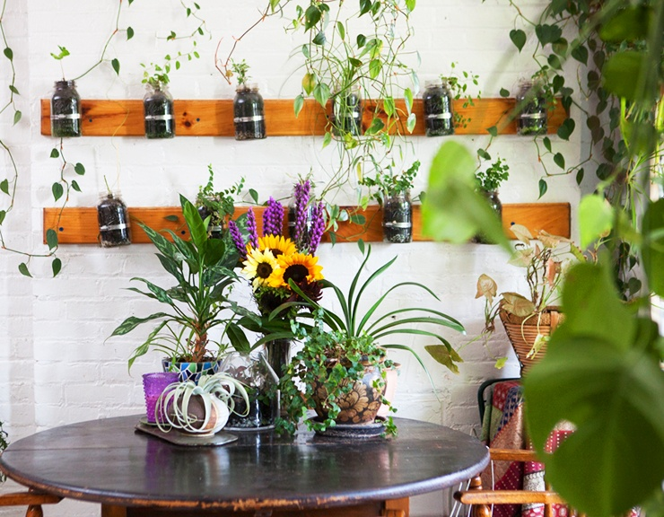 apartment garden ideas mason jars