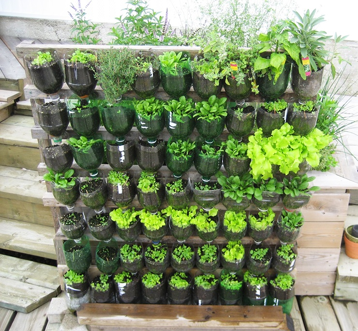 apartment garden ideas with 2 liter planters with watering