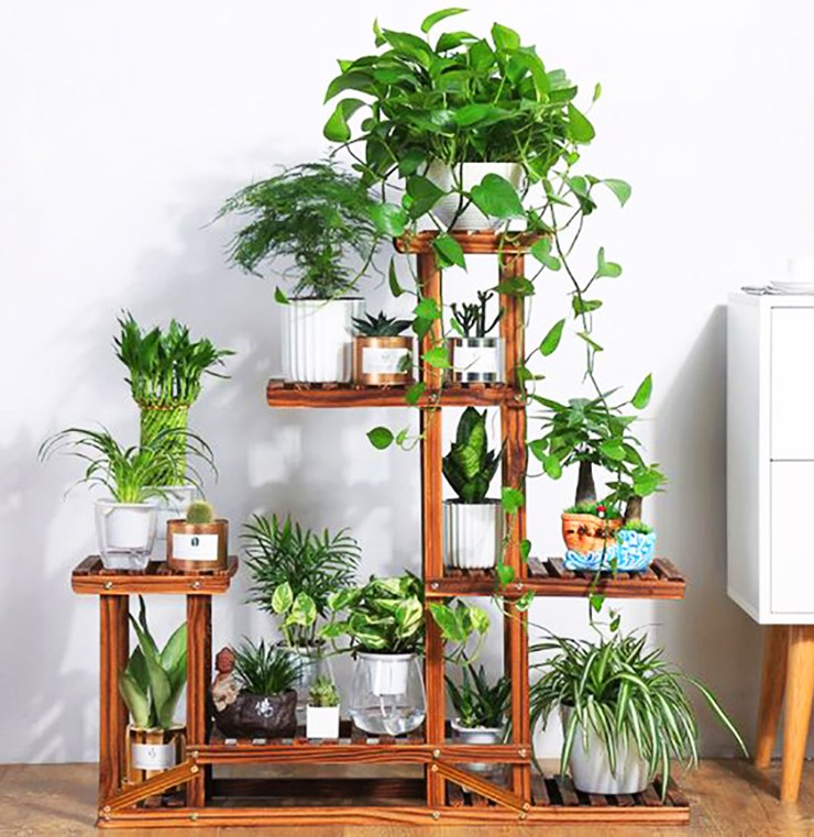 indoor plant apartment stand mini garden
