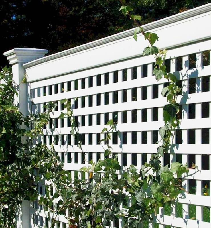 grid climbers wall fence