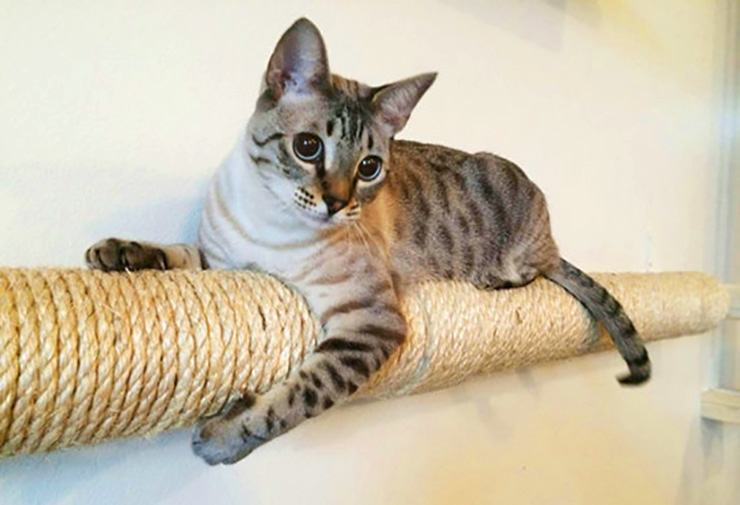 rope pipe cover for cat scratching post and cat tree