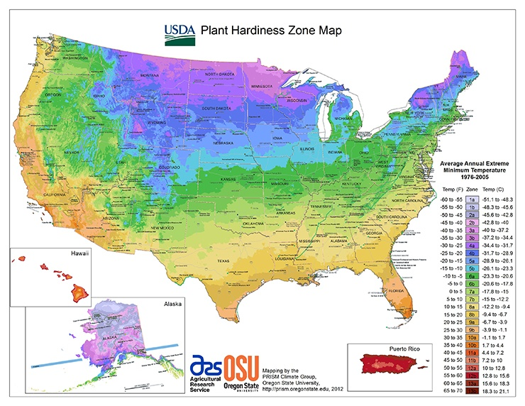 usda plant hardiness zones - best time to plant fruit trees by location