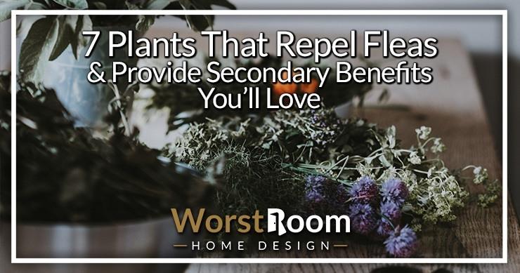 plants that repel fleas
