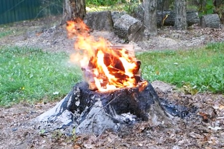 burn tree stump with fire