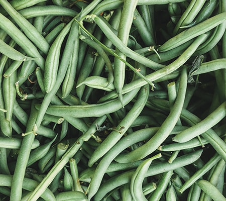 green beans are one of the easiest and tastiest climbing vegetables to grow