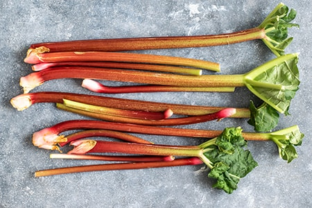 how to store rhubarb