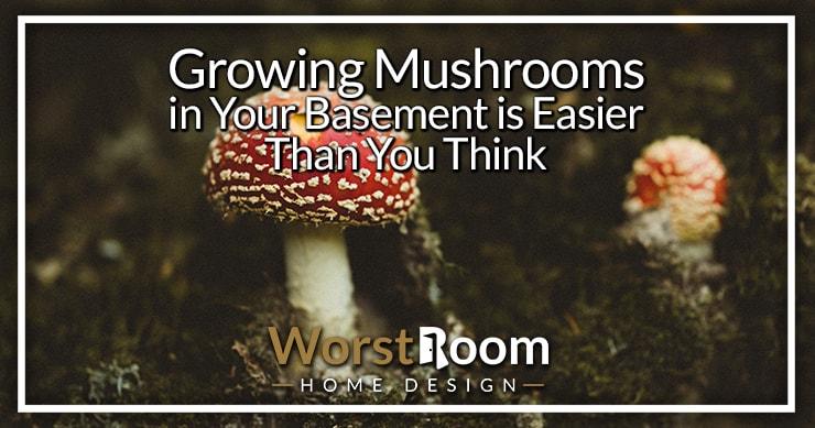 growing mushrooms in your basement