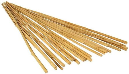 pea sticks stakes for tendrils