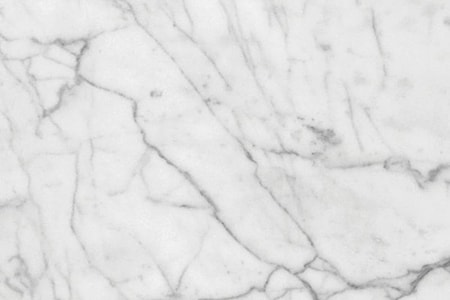 white carrara marble types are a beauty to behold