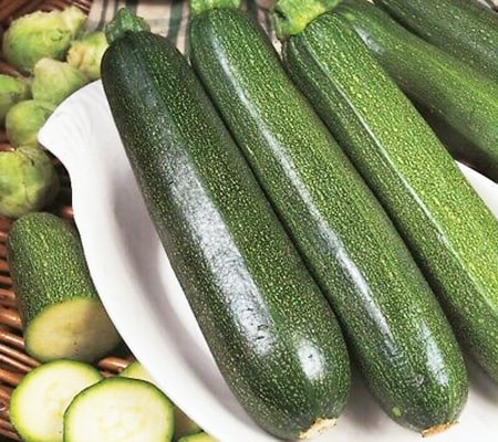 all green bush zucchini are simple but voluminous kinds of zucchini that are easy to grow and great for cooking