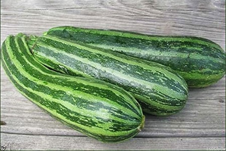 cocozelle Zucchini are zucchini varieties that feature green stripes lengthwise