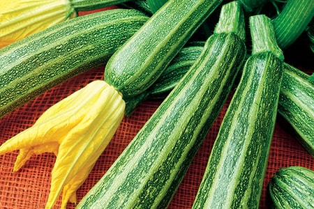 gadzukes zucchini are types of zucchini that have star shapes once they're sliced