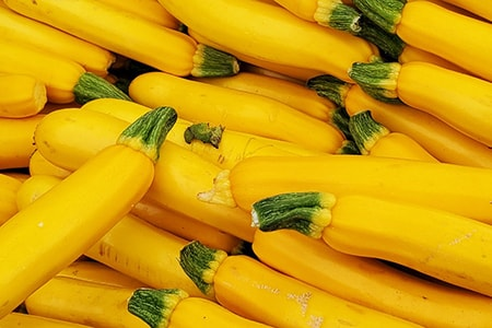 gourmet gold zucchini are varieties of zucchini that are golden-yellow in color