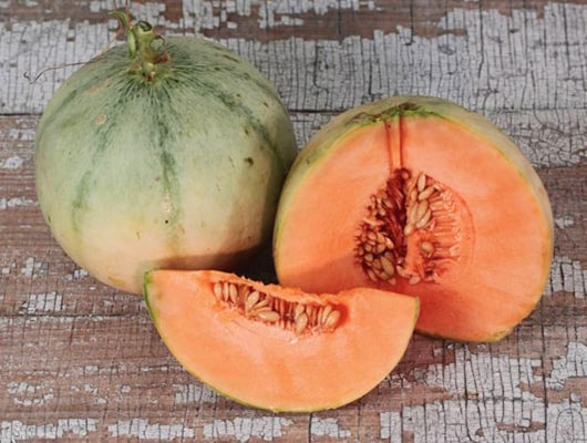 charentais cantaloupe is the signature french melon