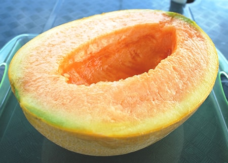 japanese cantaloupe is a luxury item and is one of the most pretty of the cantaloupe types